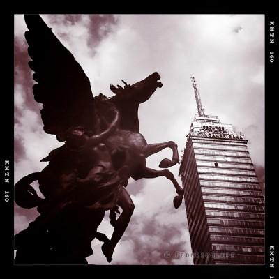 Angel Latino